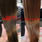 髪質改善 美容院 トリートメント 特許申請技術『髪の体幹をケア』スティーブンノル part2